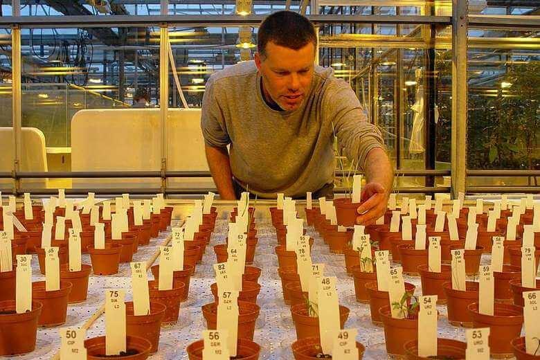 生態學家亞姆林克和由他種植的農作物 (圖:瓦格寧根大學)