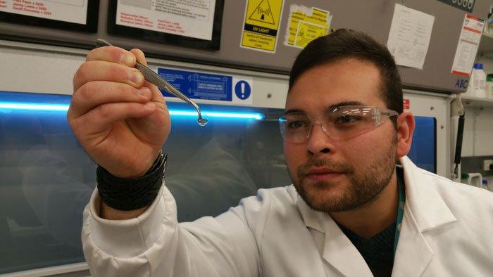 科學家培植的角膜 (圖:Berkay Ozcelik)
