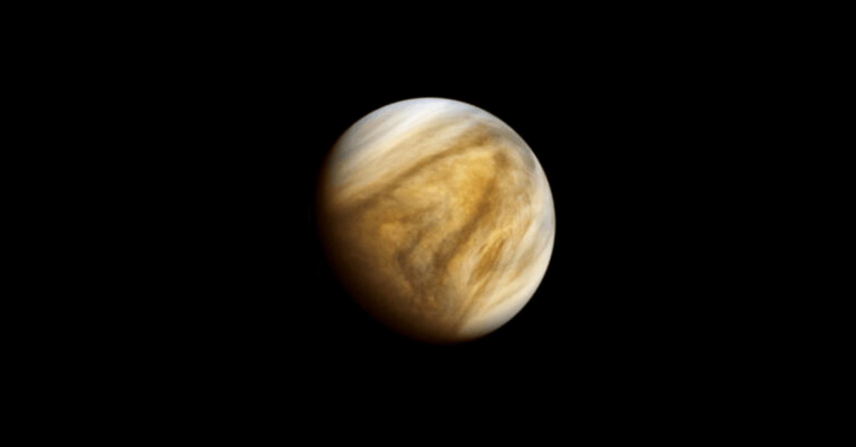 金星 生命